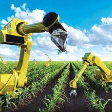 100 câu trắc nghiệm ôn thi công chức chuyên ngành Nông nghiệp và Phát triển nông thôn