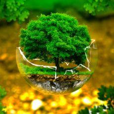 385 câu trắc nghiệm Luật môi trường