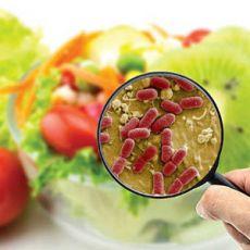 235 câu trắc nghiệm Vi sinh thực phẩm