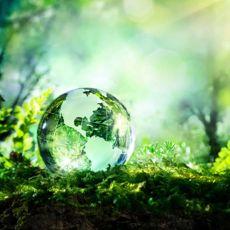 200 câu trắc nghiệm Kỹ thuật môi trường